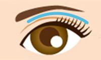 上眼瞼脱脂法(目の上の脂肪除去)